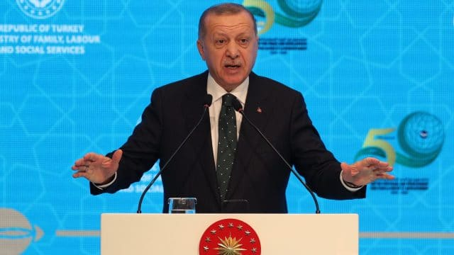 Investigation Highlights Spike in Cases of Insulting Turkish President