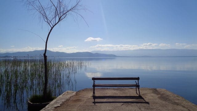 Balkan Lake Ohrid Under Threat From Loss of Reed Belts